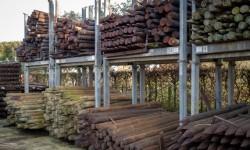 Poteaux en bois
