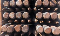 Poteaux en bois rond créosoté